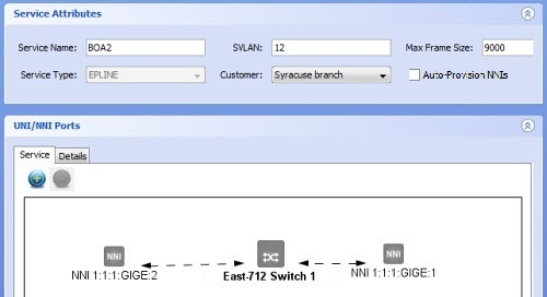 Creating Services Over BTI700 Series And/or BTI800 Series Only Networks