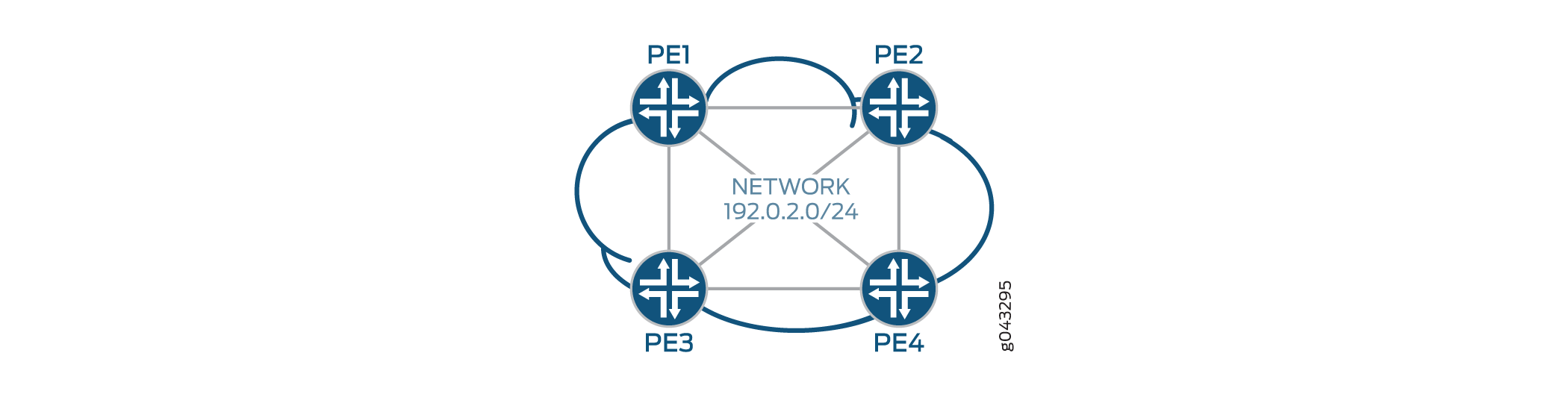 Service Provider Network with PE Routers