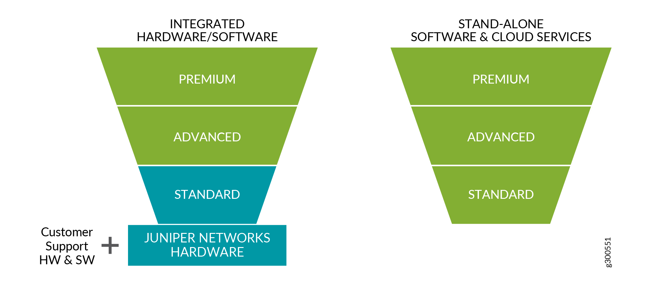 Three-Tier Model for the Flex Software Subscription Model