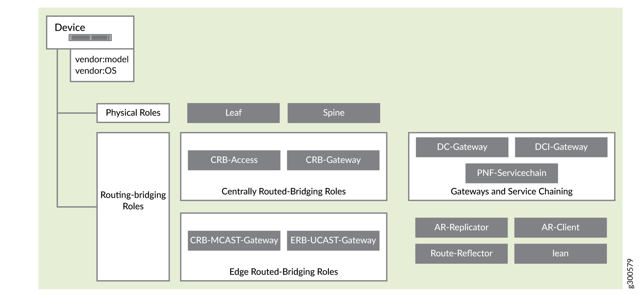 Supported Physical Roles and Routing-Bridging Roles