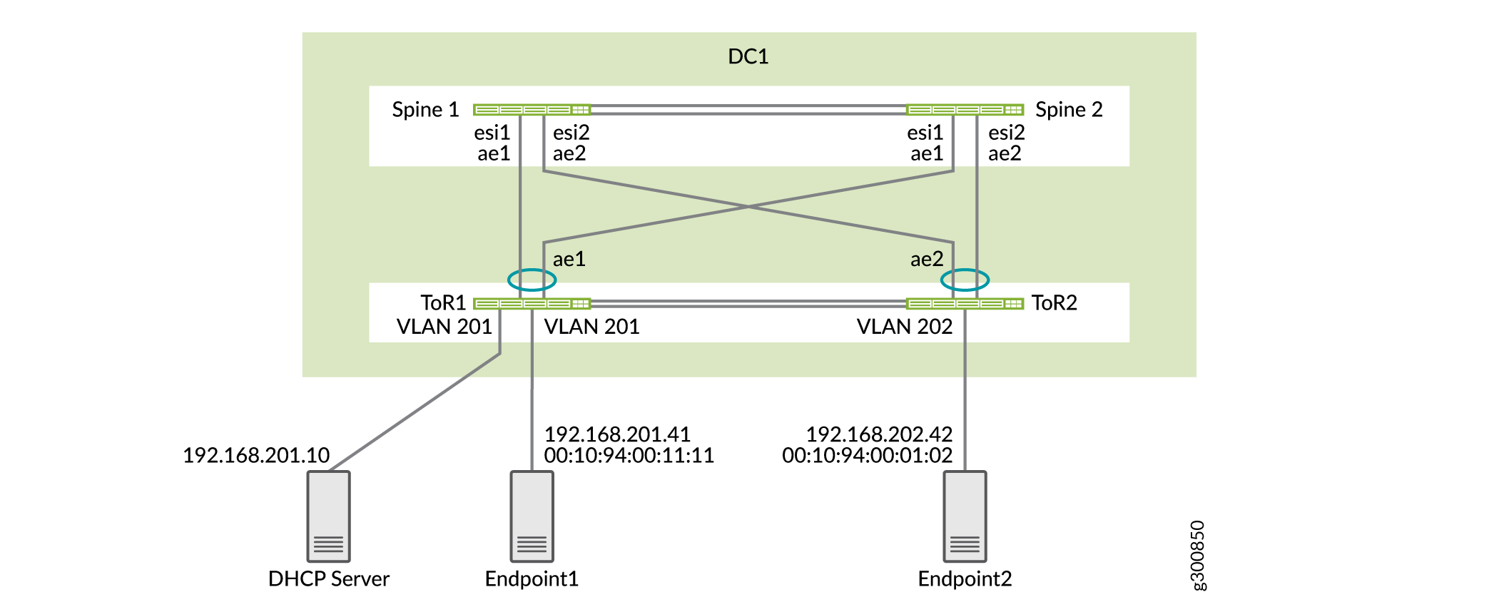 DHCP Relay Topology