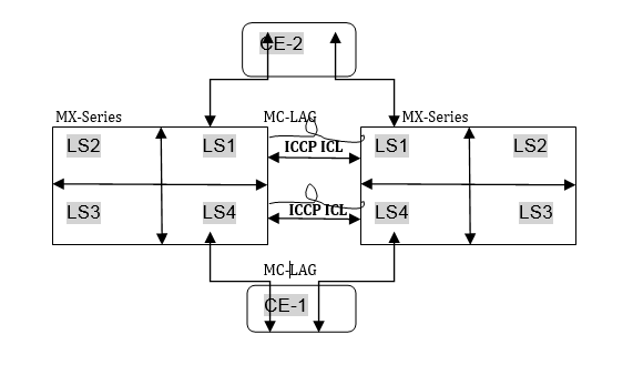 Logical Systems with MC-LAG